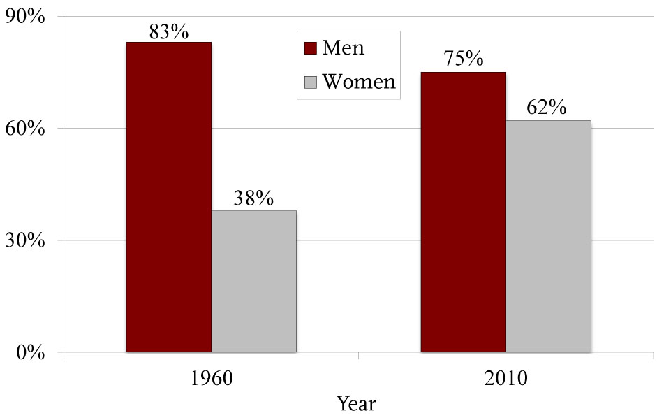 Changes in Labor Force and Earnings Patterns by Sex 1960 and 2010